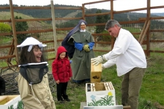 Bee Hives for the Orchard